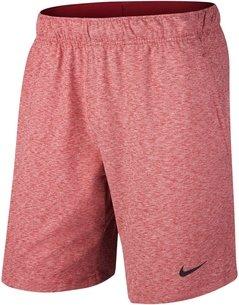 Nike Dry Fit Shorts Mens