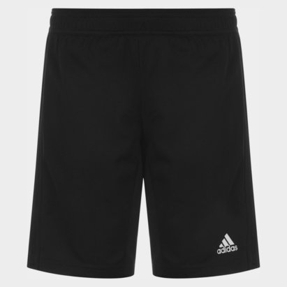 adidas 2 in1 Shorts