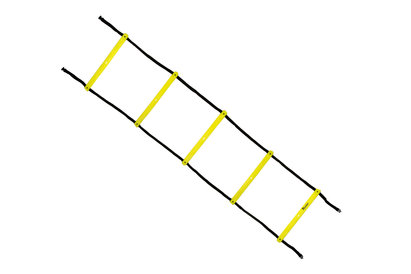 Precision Training 2 Metre Speed Agility Ladder