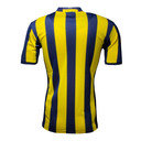 Fenerbahce SK 16/17 Home S/S Replica Football Shirt