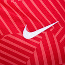 Paris Saint-Germain 16/17 Dry Squad Football Training Shirt