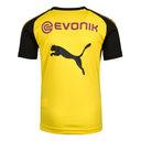 Borussia Dortmund 17/18 Kids S/S Football Training Shirt